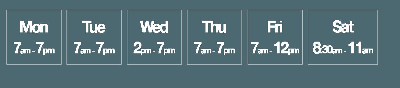 ap-chiro-hours